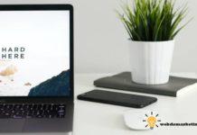 cómo crear un portafolio digital